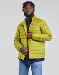 Vêtements Homme Doudounes Levi's OASIS