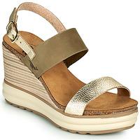 Schuhe Damen Sandalen / Sandaletten Plakton PLAKA Khaki / Golden