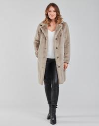Vêtements Femme Manteaux Oakwood CYBER