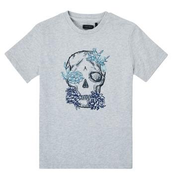 Vêtements Garçon T-shirts manches courtes Ikks XS10243-21-C