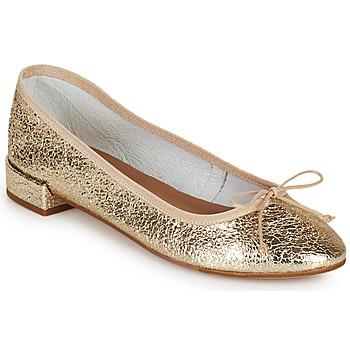 Chaussures Femme Ballerines / babies Minelli PLIVIA