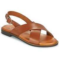 Chaussures Femme Sandales et Nu-pieds Minelli DONA