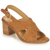 Chaussures Femme Sandales et Nu-pieds Minelli CASIMIERA