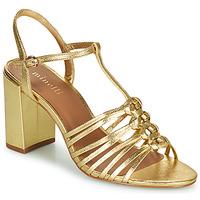 Chaussures Femme Sandales et Nu-pieds Minelli SYLVIA