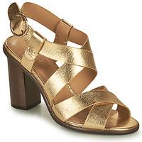 Chaussures Femme Sandales et Nu-pieds Minelli THIYA