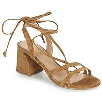 Chaussures Femme Sandales et Nu-pieds Minelli AMELIA