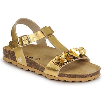 Schuhe Mädchen Sandalen / Sandaletten Citrouille et Compagnie KAPIBA Golden