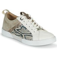 Schuhe Mädchen Sneaker Low JB Martin GELATO Grau / Weiß