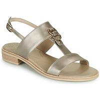 Chaussures Femme Sandales et Nu-pieds NeroGiardini PLUIE