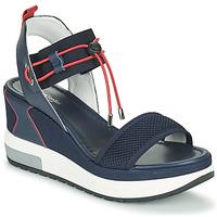 Chaussures Femme Sandales et Nu-pieds NeroGiardini CAMINO