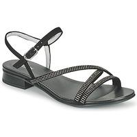 Chaussures Femme Sandales et Nu-pieds NeroGiardini TEDDY