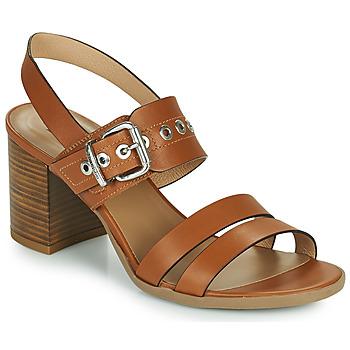 Chaussures Femme Sandales et Nu-pieds NeroGiardini GHILLO