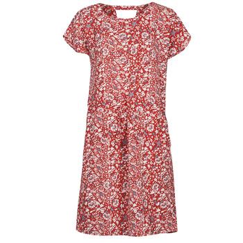 Vêtements Femme Robes courtes Only ONLNOVA