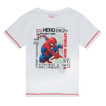 Vêtements Garçon T-shirts manches courtes TEAM HEROES  SPIDERMAN TEE