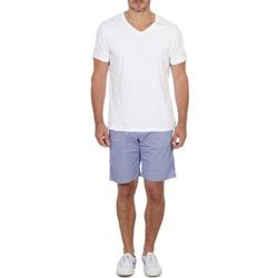 Vêtements Homme Shorts / Bermudas Franklin & Marshall GAWLER Bleu / Beige