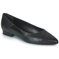 Chaussures Femme Ballerines / babies JB Martin TENDRE
