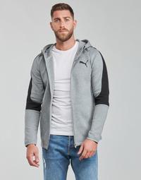 Vêtements Homme Sweats Puma EVOSTRIPE CORE FZ HOODIE
