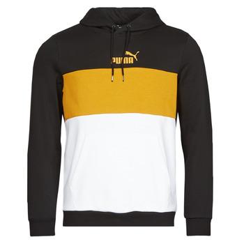 Vêtements Homme Sweats Puma ESS+ COLORBLOCK HOODIE FL