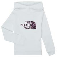 Abbigliamento Bambina Felpe The North Face DREW PEAK HOODIE