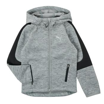 Vêtements Garçon Sweats Puma EVOSTRIPE FZ HOODED JACKET