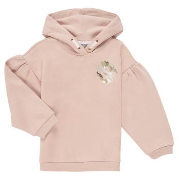 Vêtements Fille Sweats Puma ALPHA HOODIE
