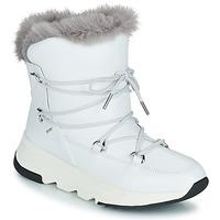 Chaussures Femme Bottes de neige Geox FALENA ABX