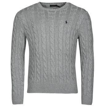 Kleidung Herren Pullover Polo Ralph Lauren SERINA Grau