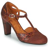 Chaussures Femme Escarpins Chie Mihara KUNA