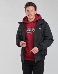 Vêtements Homme Blousons Dickies NEW SARPY JACKET
