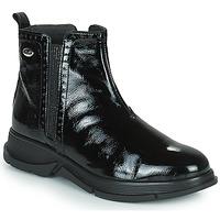 Chaussures Femme Boots Scholl YORK