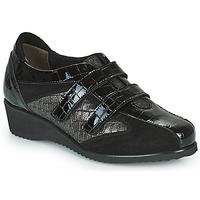 Chaussures Femme Baskets basses Scholl DOREEN STRAP