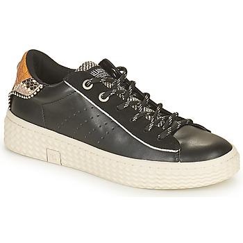 Scarpe Donna Sneakers basse Palladium Manufacture TEMPO 04 SYN