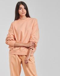 Vêtements Femme Sweats Levi's WFH SWEATSHIRT