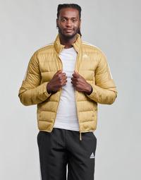 Vêtements Homme Doudounes adidas Performance ESS DOWN JACKET
