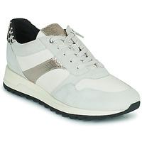 Chaussures Femme Baskets basses Geox TABELYA