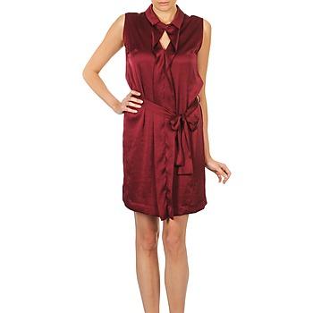 Kleidung Damen Kurze Kleider Lola ROSE ESTATE Bordeaux