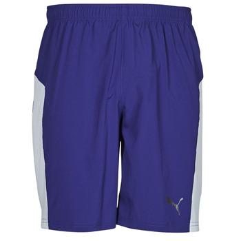 Vêtements Homme Shorts / Bermudas Puma WV RECY 9SHORT