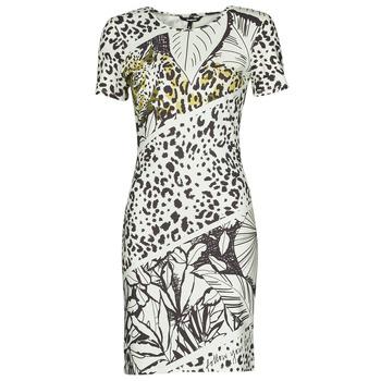 Vêtements Femme Robes courtes Desigual WILD