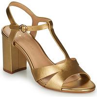 Chaussures Femme Sandales et Nu-pieds Cosmo Paris ZOUM