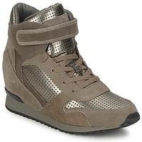 Chaussures Femme Baskets montantes Ash DRUM Marron / Or