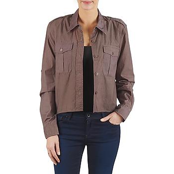 Kleidung Damen Hemden Brigitte Bardot BB43077 Braun