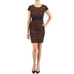 Kleidung Damen Kurze Kleider Manoukian EMMA Schwarz / Leopard