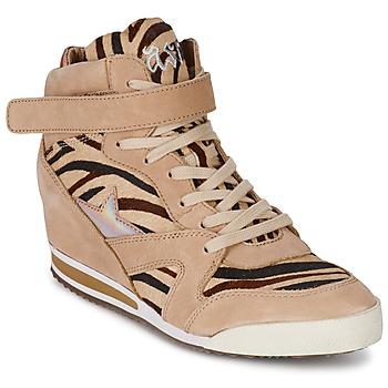 Chaussures Femme Baskets montantes Ash JAZZ Zèbre