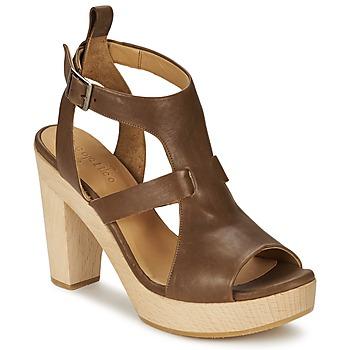 Chaussures Femme Sandales et Nu-pieds Coclico SHAE Marron