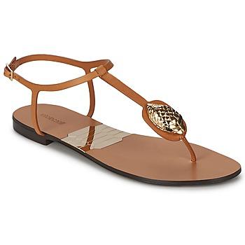 Schuhe Damen Zehensandalen Roberto Cavalli XPX243-PZ220 Braun