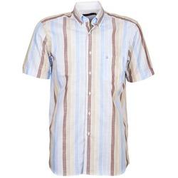 Vêtements Homme Chemises manches courtes Pierre Cardin 539936240-130 Bleu / Beige / Marron