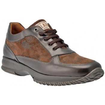 Chaussures Femme Baskets montantes Alviero Martini CasualjunioractiveSneakers Autres