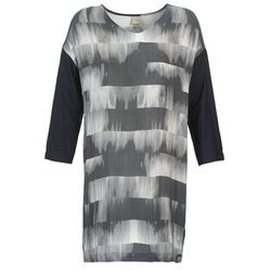 Kleidung Damen Kurze Kleider Bench CRISP Schwarz / Grau
