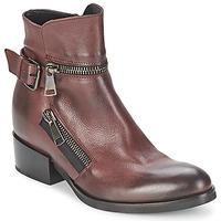 Chaussures Femme Bottines Strategia ZOOLI Bordeaux