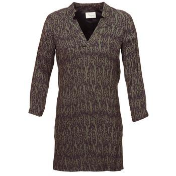 Kleidung Damen Kurze Kleider Stella Forest BRO024 Khaki